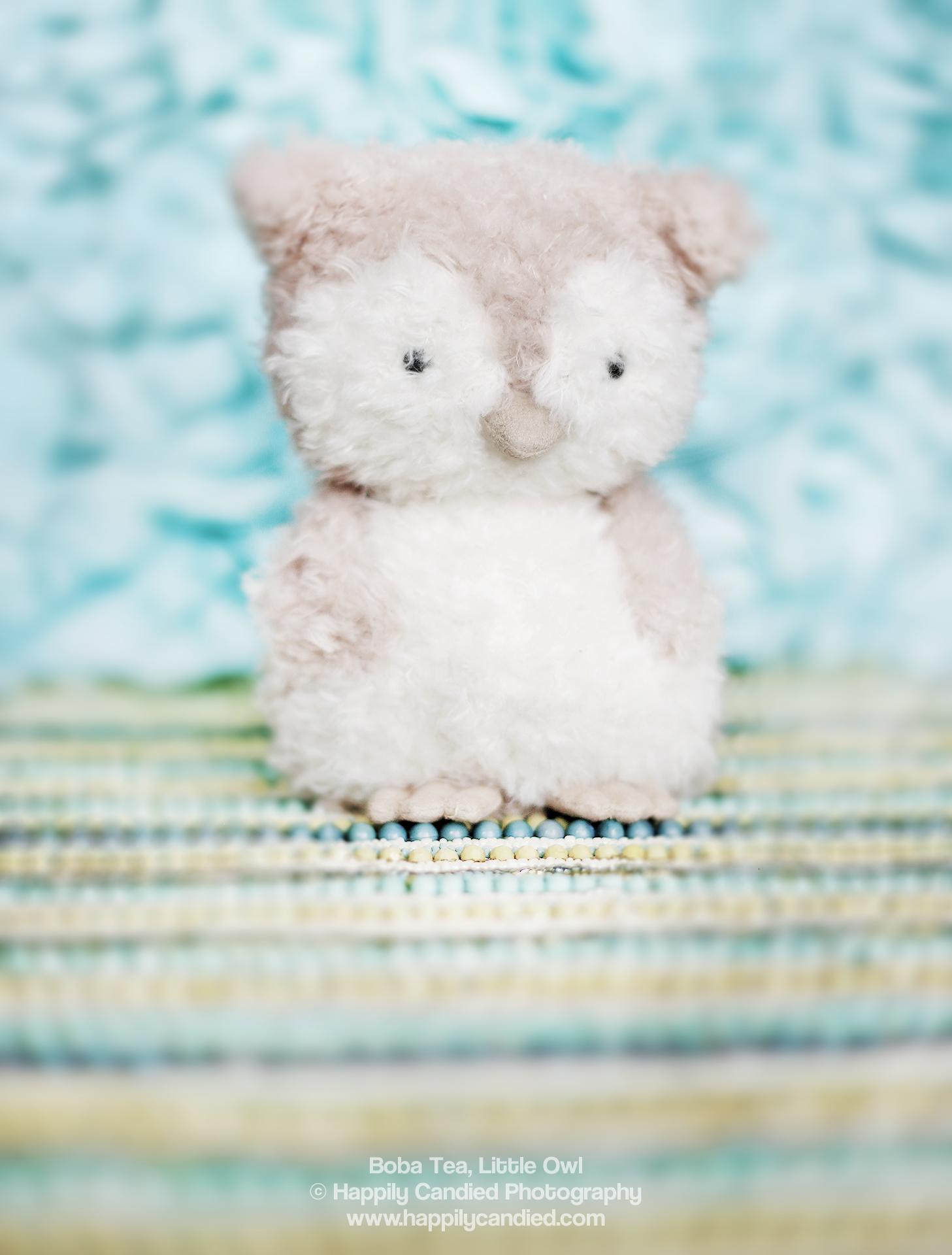 BobaTea-LittleOwl-Plush