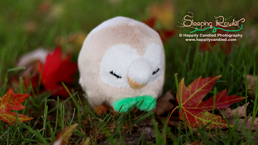 sleepingrowlet-plush-autumn_850