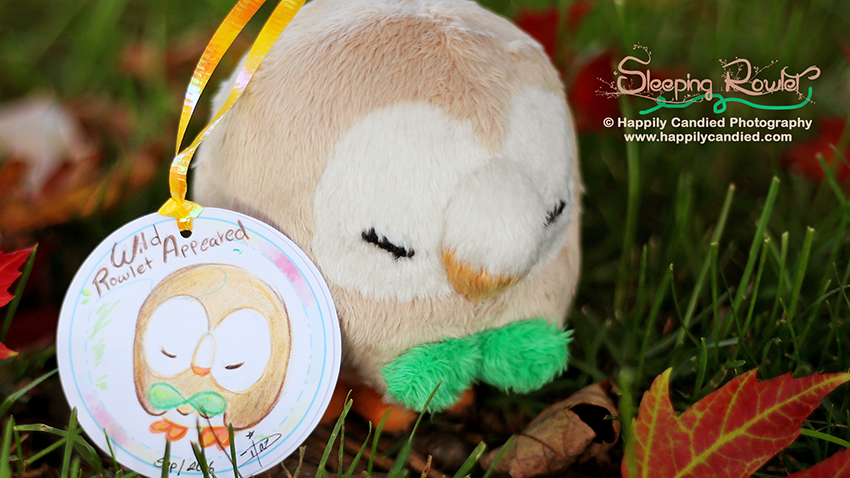 sleepingrowlet-plush-tag_850